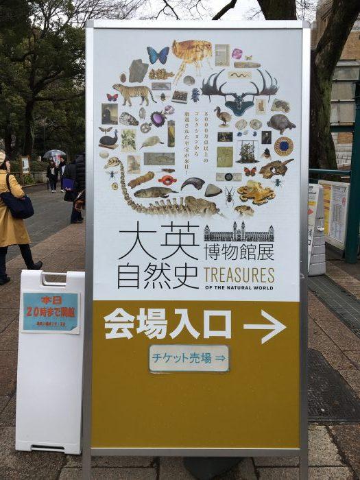 大映自然史博物館