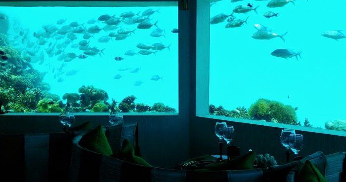 モルディブの水中レストラン、すごすぎ!