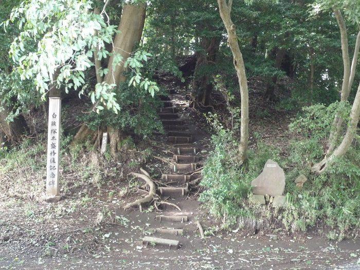 幹線道路から離れた畑の中に忽然と現れる小さな森なので、知らないと辿り着くことができません。実はここ、心霊スポットとしても知られています。
