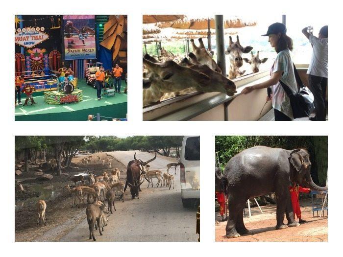 タイに動物たちの楽園「サファリワールド」があると聞いて行ってみた (提供:タイ国政府観光庁)