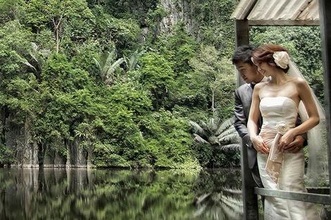 熱帯雨林でワイルドな体験ができるウェディングフォトはいかが?