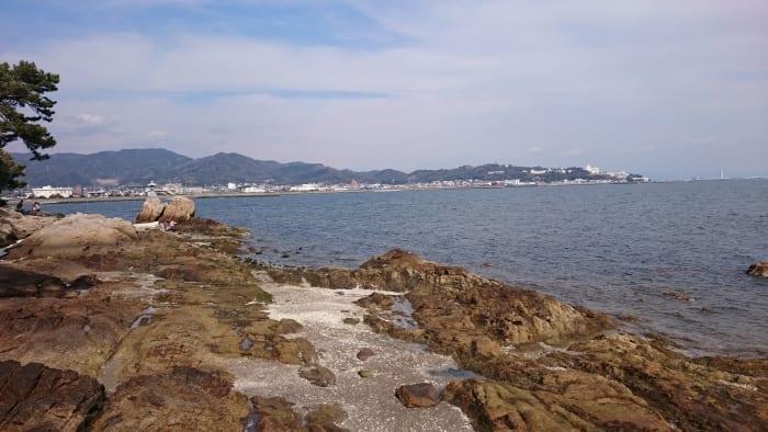 竹島から見える海