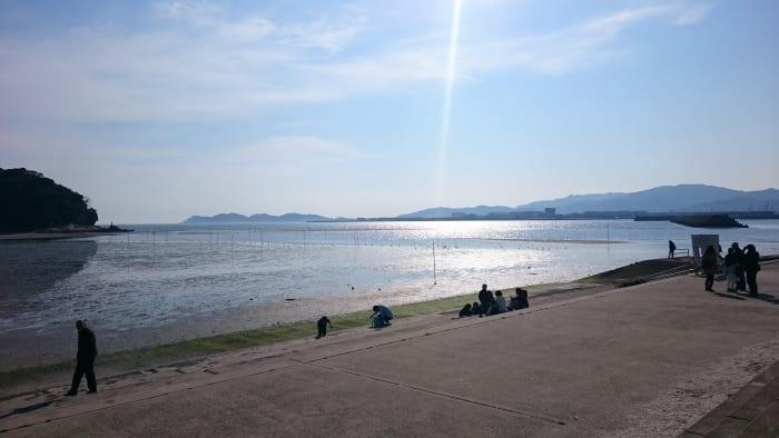 竹島橋手前から見る海