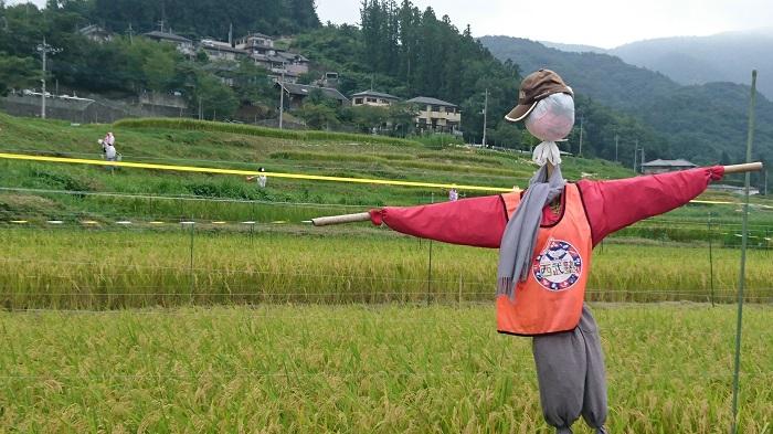 武甲山の姿はジブリアニメに隠されたメッセージ……