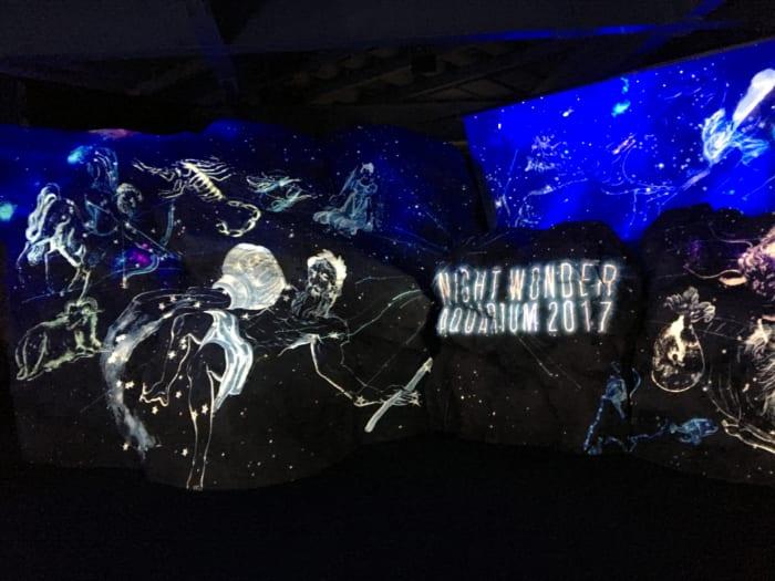 ハロウィンフェスティバルと合わせて楽しみたい「ナイトワンダーアクアリウム2017 ~満天の星降る水族館~」パート2