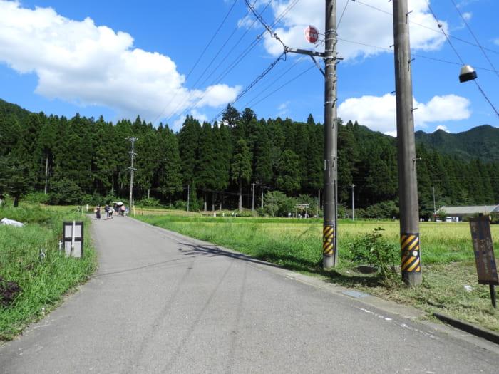 青春18きっぷで東京から日帰りできる「モネの池」