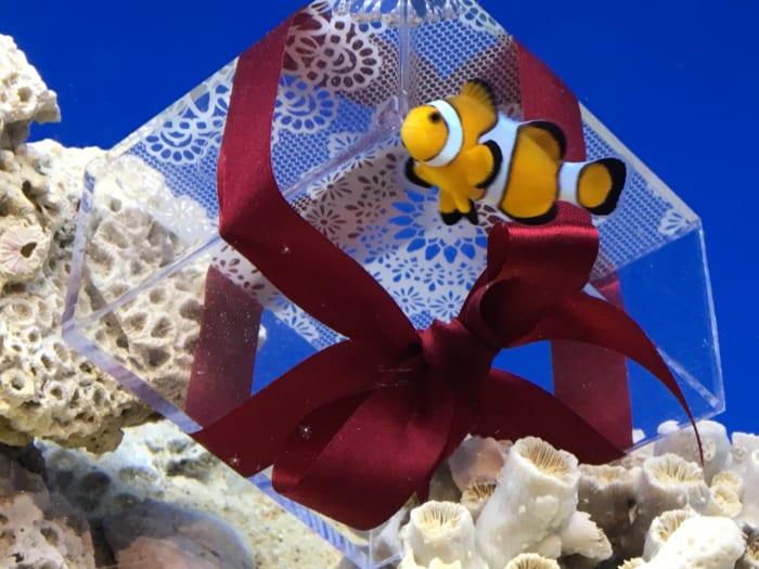 水族館デートに!えのすいバレンタイン