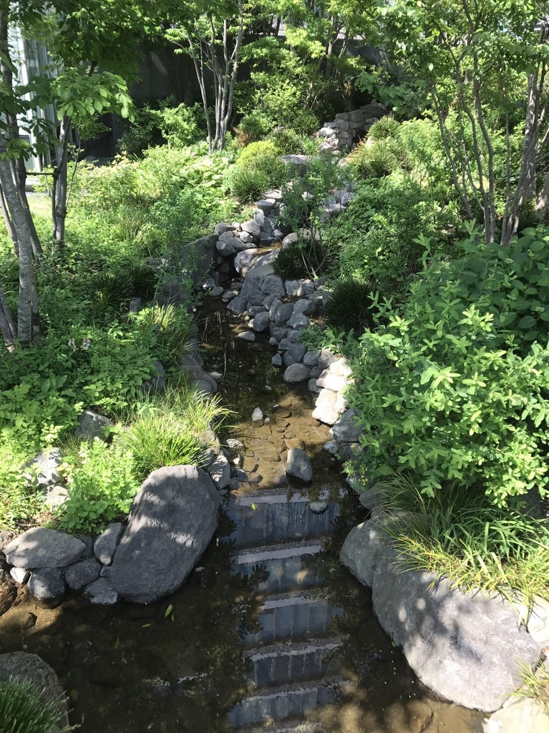 豊島区役所 水と緑